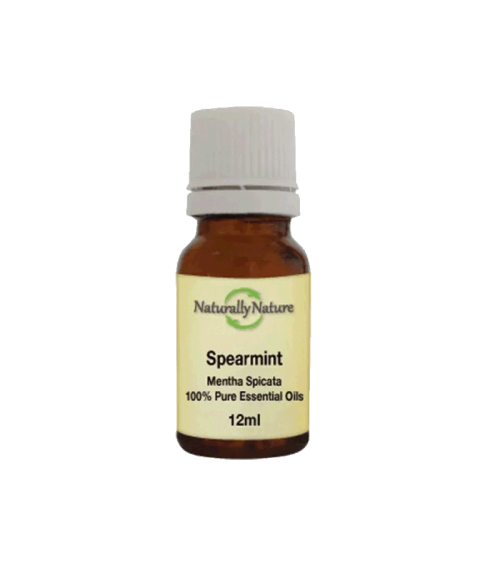 Pure Essential Oil Spearmint